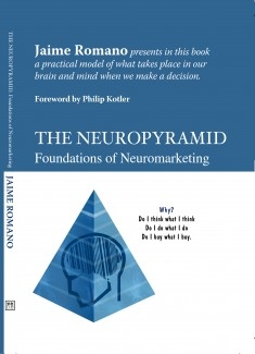 The Neuropyramid