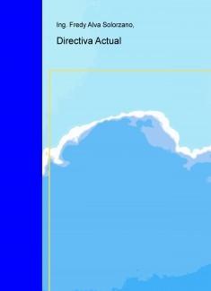 Directiva Actual