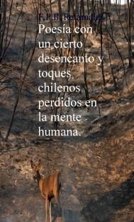 Poesía con un cierto desencanto y toques chilenos perdidos en la mente humana.