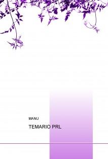 TEMARIO PRL