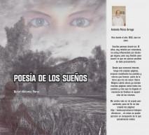 Poesía de los sueños-imágenes en negro
