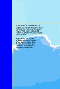 ELABORACIÓN DE UN PLAN DE CUIDADOS ESTANDARIZADO PARA PACIENTES ESQUIZOFRENICOS Y FAMILIARES EN LA UNIDAD DE HOSPITALIZACIÓN DE AGUDOS DE PSIQUIATRIA.