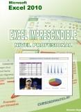 Excel 2010 Imprescindible: Nivel profesional