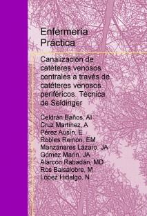 Enfermería práctica: Canalización de catéteres venosos centrales a través de catéteres venosos periféricos. Técnica de Seldinger.