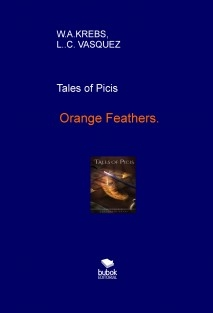Orange Feathers, tales of Picis