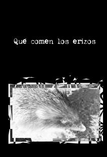 Qu Comen Los Erizos Charles Romarin Antoine J Rois