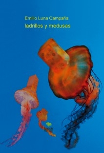 ladrillos y medusas
