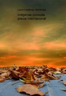 consulta previa internacional