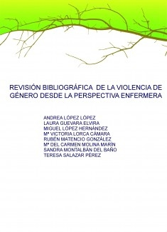 REVISIÓN BIBLIOGRÁFICA DE LA VIOLENCIA DE GÉNERO DESDE LA PERSPECTIVA ENFERMERA