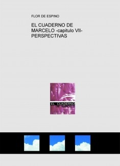EL CUADERNO DE MARCELO -capitulo VII- PERSPECTIVAS