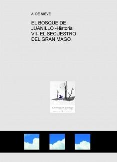 EL BOSQUE DE JUANILLO -Historia VII- EL SECUESTRO DEL GRAN MAGO