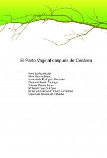 EL PARTO VAGINAL DESPUÉS DE CESÁREA