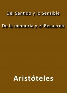 El sentido y lo sensible de la memoria y el recuerdo