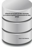 Utilización de las bases de datos relacionales en el sistema de gestión y almacenamiento de datos. UF0348