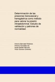 Determinación de las presiones transvesical y transgástrica como método para valorar la presión intraabdominal. Estudio de validación y patrones de normalidad.