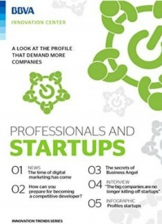 Ebook: Professionals and startups (English)