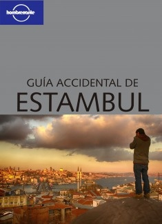 Guía accidental de Estambul