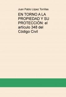 EN TORNO A LA PROPIEDAD Y SU PROTECCIÓN: el artículo 348 del Código Civil