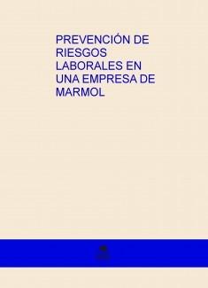 PREVENCIÓN DE RIESGOS LABORALES EN UNA EMPRESA DE MARMOL