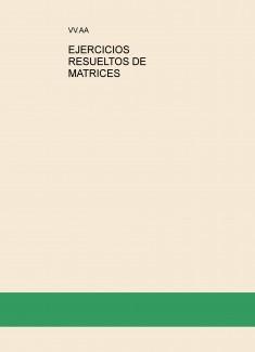 EJERCICIOS RESUELTOS DE MATRICES