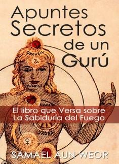 APUNTES SECRETOS DE UN GURU