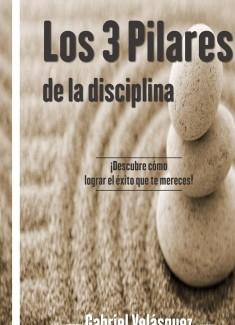 Los 3 Pilares de la disciplina