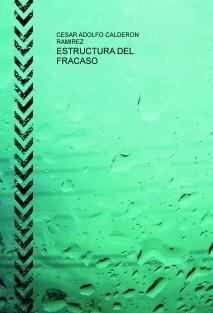 ESTRUCTURA DEL FRACASO
