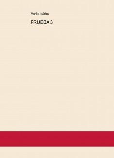 PRUEBA 3