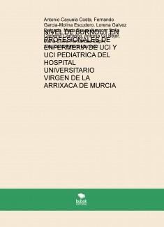 NIVEL DE BURNOUT EN PROFESIONALES DE ENFERMERIA DE UCI Y UCI PEDIATRICA DEL HOSPITAL UNIVERSITARIO VIRGEN DE LA ARRIXACA DE MURCIA