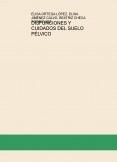 DISFUNCIONES Y CUIDADOS DEL SUELO PÉLVICO