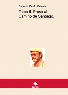 Prosa al Camino de Santiago. Tomo II