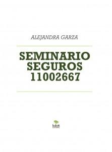 SEMINARIO SEGUROS 11002667