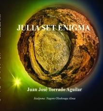 Julia Set Enigma
