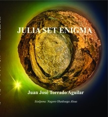 Julia Set Enigma