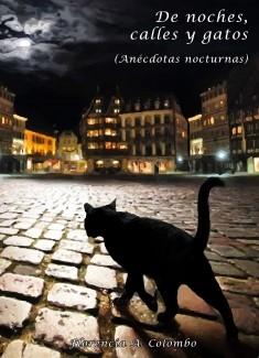 De noches, calles y gatos (Anécdotas nocturnas)