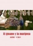 El gusano y la mariposa