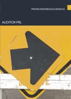 Auditor PRL