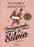 Persiguiendo a Silvia (Saga Silvia 1)