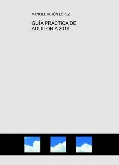 GUÍA PRÁCTICA DE AUDITORÍA 2019