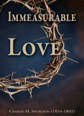 Libro IMMEASURABLE LOVE, autor EdwinHaal2020