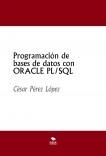 Programación de bases de datos con ORACLE PL/SQL