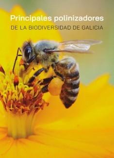 Principales polinizadores de la biodiversidad de Galicia
