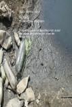 Desinfección solar del agua en países en vías de desarrollo (SODIS)