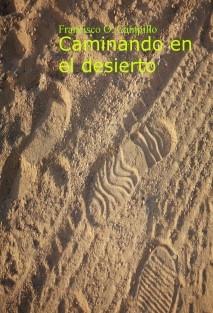 Caminando en el desierto