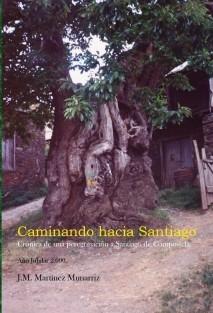 Caminando hacia Santiago