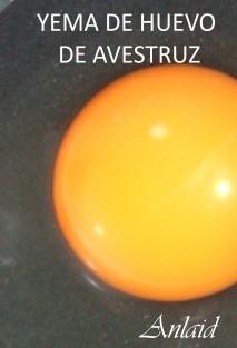 Yema de huevo de avestruz