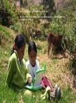 TICs aplicadas a la Educación : Una mirada a la escuela del siglo XXI