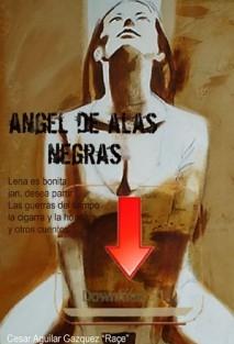 El angel de las alas negras