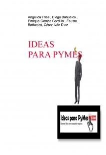 IDEAS PARA PYMES