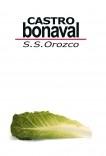 Castro Bonaval